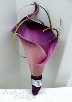 Groomsmen boutonniere Plum purple gray calla lily Wedding boutonnieres. by mari