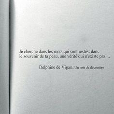 Delphine de Vigan, Un soir de décembre
