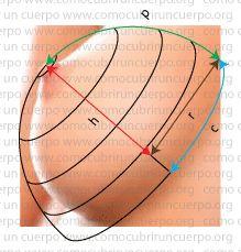 Forma de la copa de seno. De como modificar la altura de la copa de seno. y como cortar las copas esféricas, oblata y prolatas decidiendo la altura de la copa de seno.
