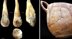 4,700-Year-Old Tooth Provides Insight on the First #Farmers of the Iberian Peninsula. #spain
