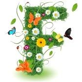 alphabet letters : Beautiful spring letter F