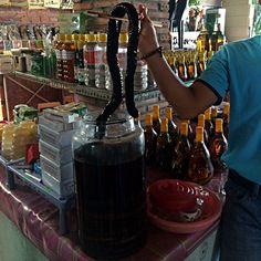 Schlange, Ratte, Hühnerfüße - Essen und Trinken in Vietnam: http://rutisreisen.de/schlange-ratte-huehnerfuesse-essen-und-trinken-vietnam/