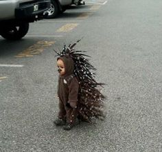 The cutest, saddest, most adorable little hedgehog costume!! Melt.