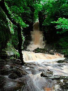 photo waterfall_smu6h9zp.gif