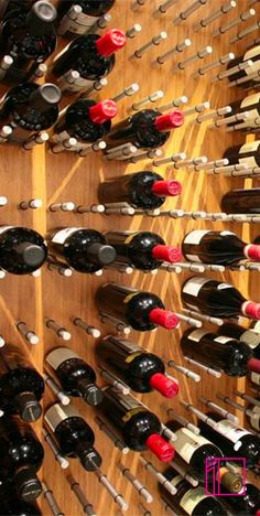modern wine cellars wall