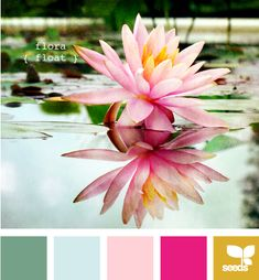 flora float: New color pallet for photography!  Replace yellow with brighter yellow: F7B800