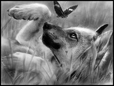 Wolf Art | Wolves WoLves