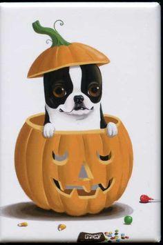 Boston Terrier Pumpkin Halloween dog art magnet via Etsy