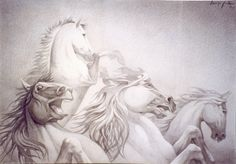 "Giannis Nikou, ""Horses"", 100X140cm, pencil on cardboard, 2003"