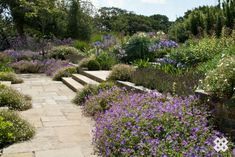 Reclaimed York Stone - Stone UK Garden Design - Acres Wild Photo - Ian Smith