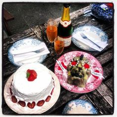 Girlfriend champagne and cake for two in the back yard <2