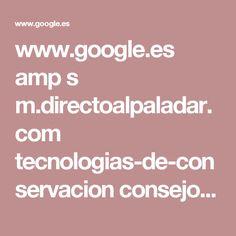 www.google.es amp s m.directoalpaladar.com tecnologias-de-conservacion consejos-para-congelar-nuestras-pizzas-caseras amp