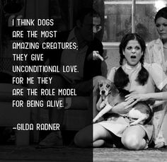 """""""I think dogs are the most amazing creatures; They give unconditional love. For me they are the role model for being alive"""" -- Gilda Radner"""