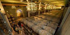 El vino de Toro se hace museo