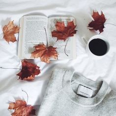 Immagine di autumn, fall, and bed
