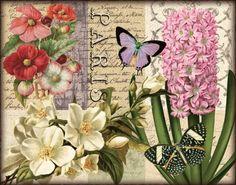 Botanical Postcard II Artist: Studio Voltaire