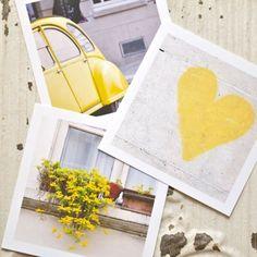 Yellow in polaroid frames