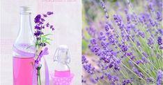 Preserves, Natural Remedies, Diy And Crafts, Glass Vase, Food And Drink, Herbs, Homemade, Drinks, Cooking