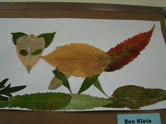 Image detail for -... Science & Art to create these beautiful leaf animal collages