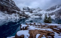 Download wallpapers Lake McArthur, winter, mountain lake, snow, forest, mountain landscape, Canadian Rockies, Yoho National Park, British Columbia, Canada