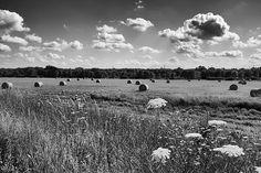 Iowa Summer   © 2013 Michael F. Hiatt