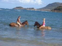 Horseriding and Swimming   Awwwww an experience like no other