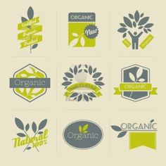 Organic retro labels, badges and other design elements with leaves  Vector illustration  Stock Photo