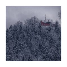 Schön ist es mit Schnee auf der Felsenegg❄  #lebeninadliswil #livinginadliswil #adliswil #stadtadliswil  #sihltal #lebenimsihltal… Painting, Instagram, Art, Snow, Round Round, Nature, Life, Nice Asses, Art Background