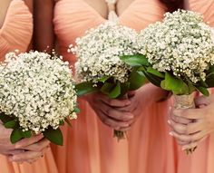 Bouquets of babies breath.  San Diego Bay Flower Company, summer 2011.