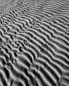 #landscape #bnw_style #bnw #blackandwhite #bnw_demand #instablackandwhite #sea #light #bw_photooftheday #beach #sand #photooftheday #bw #wave #noiretblanc #mer #fineart #onde #pictorialism #art #water #beautiful #style #composition #dune #perspective #sable #plage #shadow by sylvain_rohee Photography 2017, Cycle 3, Natural Forms, Light And Shadow, Sands, Mythical Creatures, Landscape Photos, Animal Print Rug, Fine Art