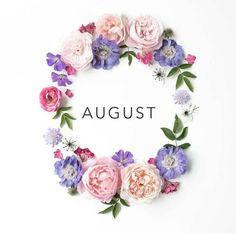 ༺ Ⱳᴇʟϲoмᴇ ༻  August