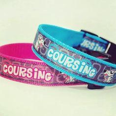 "Obojky Blackberry ""COURSING""   Collars by Blackberry ""COURSING"" #coursing #dogsport #collar #pink #blue #pet #design #blackberry"