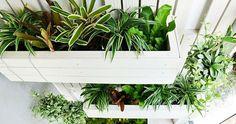 30 ideas de reciclaje para crear un precioso jardín vertical