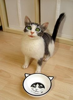 Künstler-Katze / Nadel gefilzt Bettel Katze / OOAK / Sammler
