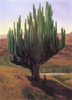 Jose Maria Velasco Cardón - Handmade Oil Painting Reproduction on Canvas Impressionist Paintings, Landscape Paintings, Landscapes, Jose Maria Velasco, Art Chicano, Mexican Artists, Popular Art, Art Database, Oil Painting Reproductions