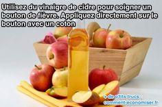 Apple Cider Vinegar for Acne.How to Use Apple Cider Vinegar for Acne? Various Benefits of Apple Cider Vinegar. How to Treat Acne with Apple Cider Vinegar? Apple Health Benefits, Apple Cider Benefits, Apple Cider Vinegar Health, Apple Vinegar, Vinegar Diet, White Vinegar, Sugar Cravings, Pcos, Endometriosis Symptoms