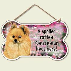 Pomeranian Dog Sign Wall Plaque Bone Shape Spoiled Rotten available at www.DogLoverStore.com