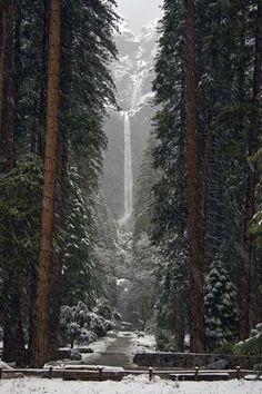 The beautiful snowfall of Yosemite Falls, Ca.