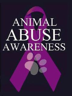 We need to put a stop to all animal abuse.