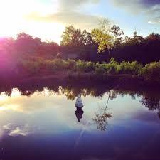 """Resultado de imagem para """"É bom deixar todos os dias para trás, como água corrente, livre de tristeza. Ontem foi, e sua história contada. Sementes novas hoje estão crescendo..."""
