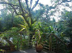 Afternoon view at camp benjamin. :-D have fun!