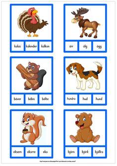 Börjar lika - 5 sidor med nypkort Swedish Language, Scooby Doo, Literacy, Alphabet, Kindergarten, Homeschool, Teaching, Pdf, Education
