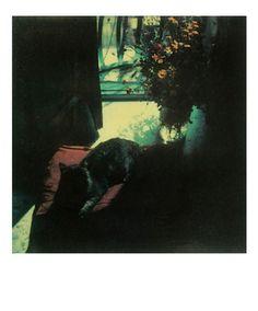 Russian auteur Andrei Tarkovsky's recently discovered polaroids