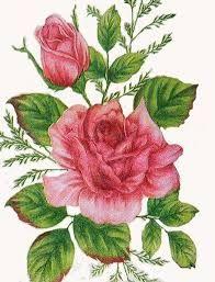 Resultado de imagen para laminas antiguas flores