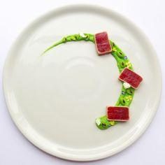 Tuna & Soybean