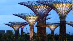 """Singapore's Magical """"Gardens By The Bay"""""""