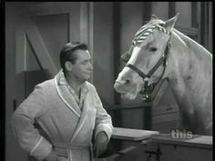 Still on tv which I watch every weekend. 60s Tv Shows, Old Shows, Great Tv Shows, Mister Ed, Sweet Love Story, Classic Comedies, Hooray For Hollywood, Favorite Tv Shows, Favorite Things