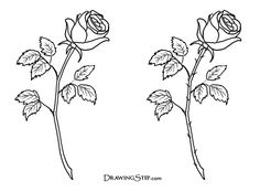 drawing drawings roses rose tattoo simple draw easy pencil flower tattoos hand stem sketch thorns cliparts single sketches outline clipart