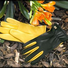 Gold Leaf Dry Touch Gardening Gloves in Ladies & Gents sizes. Fine quality leather gloves with added protection against wet Ladies Gents, Gardening Gloves, Rind, Cool Things To Buy, Stuff To Buy, Leather Gloves, Lawn And Garden, Garden Bed, Garden Tools