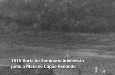 quando a cidade era mais gentil | foto e memória de São Paulo | Página 41
